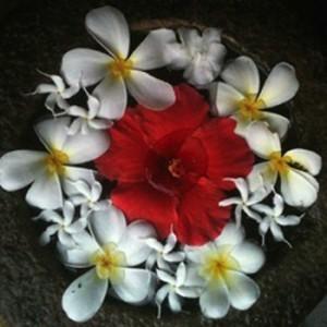 Blumenmandala
